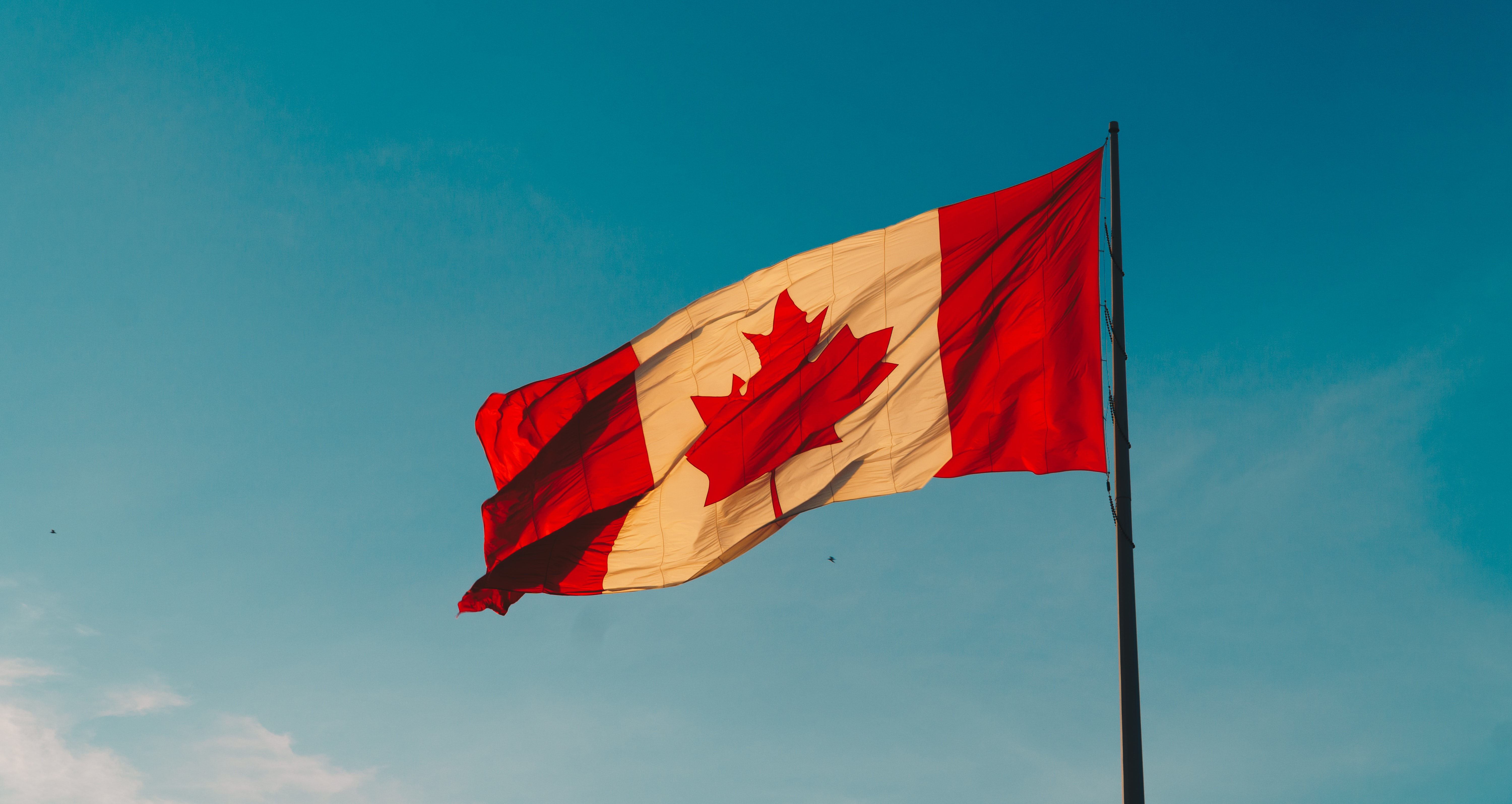 The Canadian Immigration Landscape in 2021